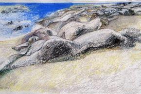 """Studio per spiaggia """"dinamismi dell'inerzia"""" - 2013, pastello su carta, cm 45x80"""