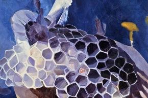 Un vespaio - 1967, olio su tela, cm. 110x80